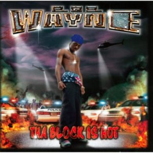 lil wayne torrent discography