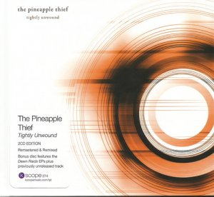 the pineapple thief discography