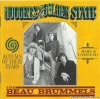 The Beau Brummels - Autumn Of Their Years (1994) [FLAC (tracks + .cue)]