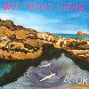 Deep Throat Choir - Be OK (2017) [FLAC (tracks)]