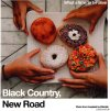 Black Country, New Road - For The First Time / What A Time To Be Alive (Limited Edition) (2021) [FLAC (tracks + .cue)]
