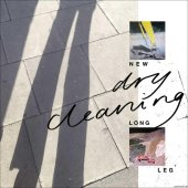 Dry Cleaning - New Long Leg (2021) [FLAC (tracks + .cue)]