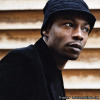 MC Solaar (1991-2007)  [FLAC (tracks + .cue)]