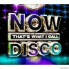 VA - Now That's What I Call Disco (2013) [FLAC (tracks + .cue)]
