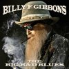 Billy F Gibbons - The Big Bad Blues (2018) [FLAC (tracks)]
