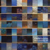 Tindersticks - The Something Rain (2012) [FLAC (tracks + .cue)]
