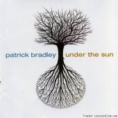 Patrick Bradley - Under the Sun (2011) [FLAC (image + .cue)]