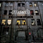 Mesh - A Perfect Solution (2009) [APE (image + .cue)]